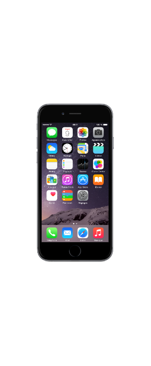 iPhone 6 Gamme Access 16 Go Gris Sidéral