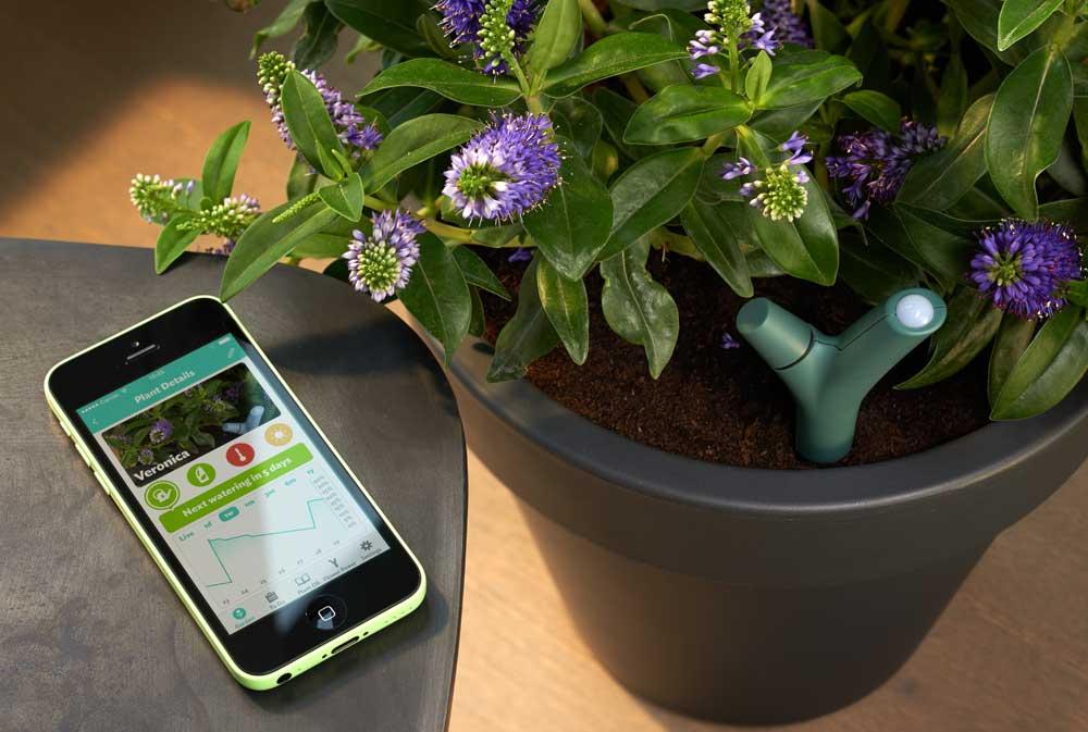 Capteur de plantes connecté Flower Power