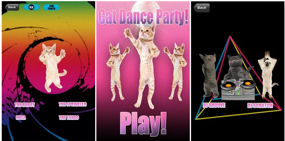 application-dance-cat-party
