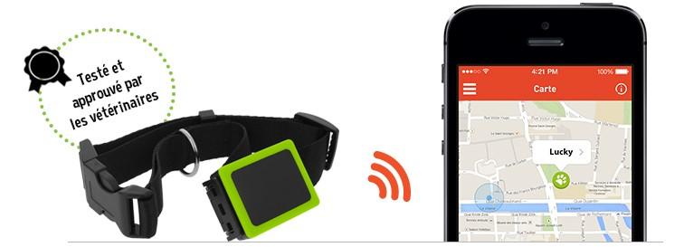 Collier GPS Weenect Pets